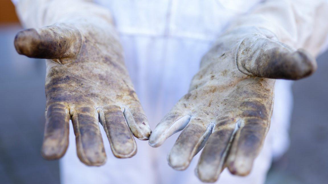 Sich die Hände schmutzig machen - Stadtteilschule Lohbrügge